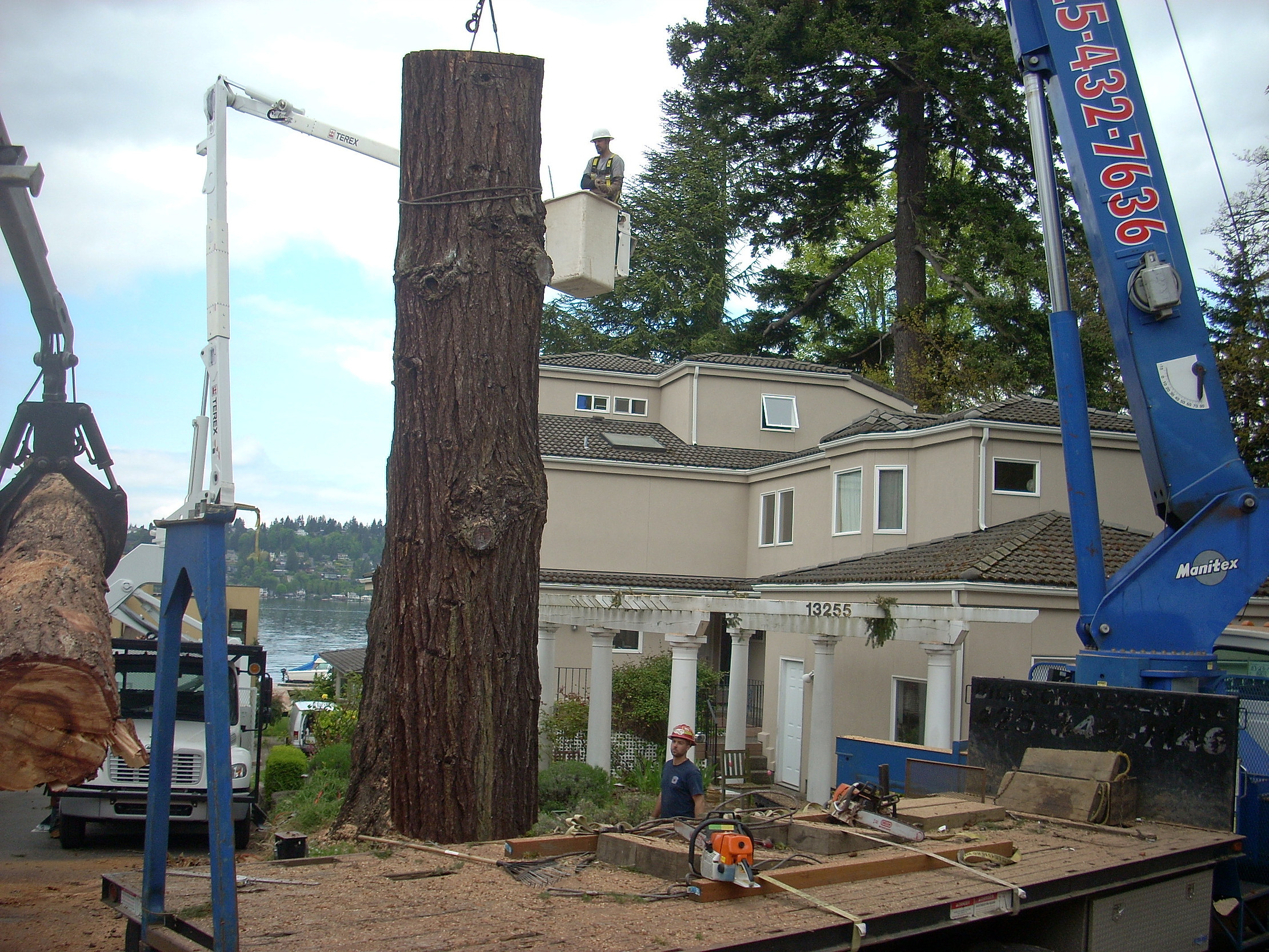 P'n'D Logging and Tree Service