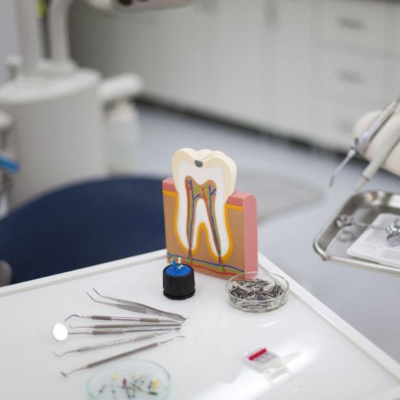 Shane Parsons, DMD – Timberline Dental