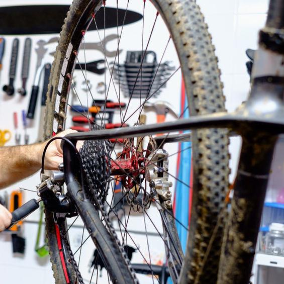 Oswego Cyclery