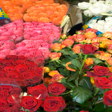 Carthage Flowers & Gifts