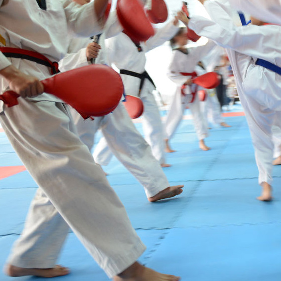 South's Martial Arts