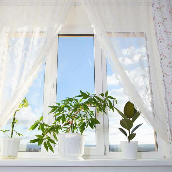 State Window Shade
