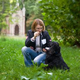 Success Dog Training