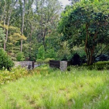 CARBO Landscape Architecture