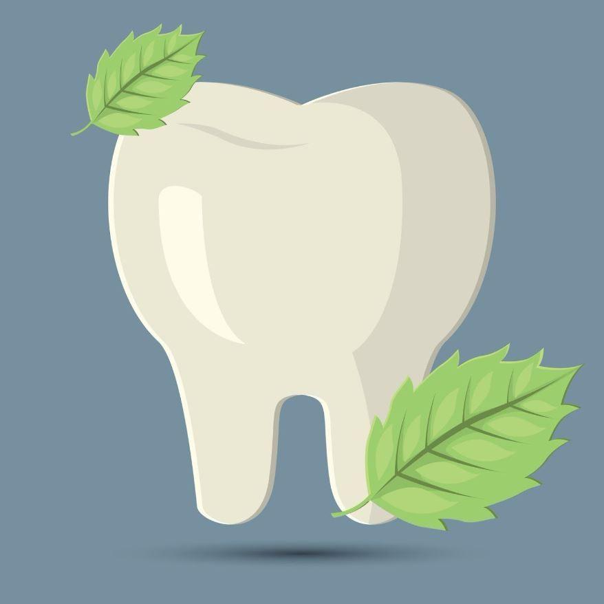 Ironwood Dental Center
