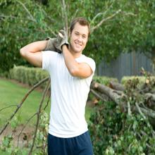 Bud's Tree Care