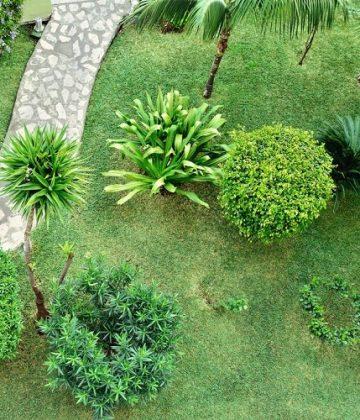 Turlock Lawn & Landscape
