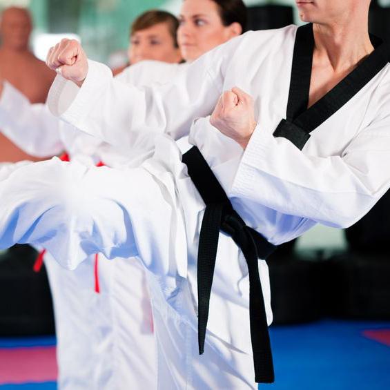 MBA Majest (Martial Arts Black Belt Academy)